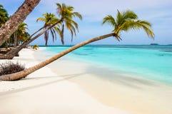 Paradijsstrand op Caraïbisch eiland Stock Foto
