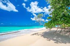 Paradijsstrand Playa overwogen Rincon, één van de 10 hoogste stranden in de Caraïben, Dominicaanse Republiek Stock Afbeeldingen