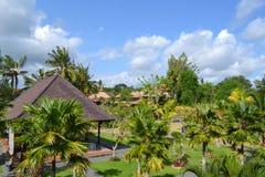 Paradis à l'île de Bali (Indonésie) Photographie stock libre de droits
