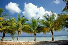 Paradis d'île photos stock