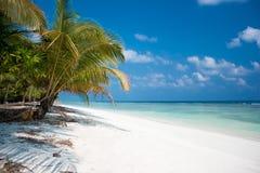 Paradis d'île Photo stock