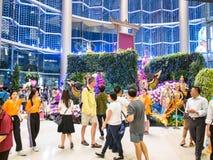 Paradis 2014 d'orchidée de Bangkok de parangon Images libres de droits