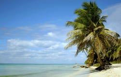 Paradis de Caribean Image libre de droits