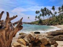 Paradis de paysage de plage de l'Asie Sri Lanka Photographie stock libre de droits