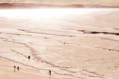Paradis de surfers Images stock