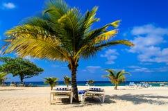 Paradis des Caraïbes Photographie stock libre de droits