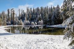 Paradis I d'hiver Image libre de droits