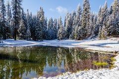 Paradis IV d'hiver Photos libres de droits