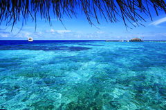 Paradis Maldiverna Arkivfoto