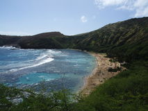 Paradis på den Hanauma fjärden, Oahu, Hawaii Royaltyfri Bild