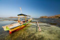 Paradis på lombokstranden, indonesia royaltyfri foto
