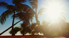 Paradis sur le rendu de l'île 3d d'Hawaï Image stock