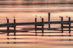 Paradis sur le rivage oriental du Maryland Images libres de droits