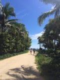 paradis till walkwayen Royaltyfri Fotografi