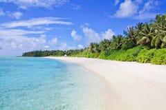 Paradis tropical Photo stock