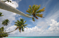 Paradis tropical Photographie stock libre de droits