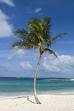 paradis tropical Images stock