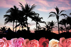 Paradis tropical avec amour Photo stock