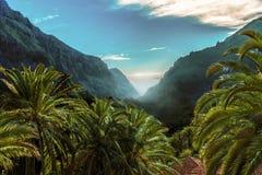 Paradis tropical avec des palmiers et des montagnes photo stock