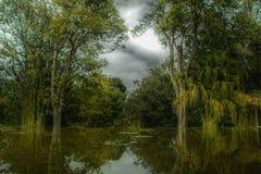 Paradis tropical avec le lac naturel dans une forêt tropicale images libres de droits