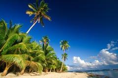 Paradis tropical de plage Images libres de droits