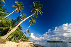Paradis tropical de plage Photographie stock