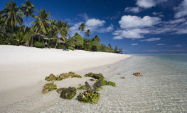Paradis tropical - les îles Cook Photos stock