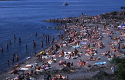 Paradisbukta beach. The beach Paradisbukta in Oslo in Norway stock image
