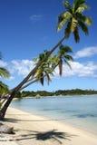 Paradise Royalty Free Stock Image