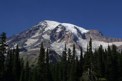 Paradise. Mount Rainier from the Paradise area of Mount Rainier National Park royalty free stock photography