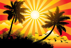 Paradise. Graphic  illustration of a sunny beach with birds and palm trees Royalty Free Stock Photos
