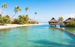 Paradise! stock images