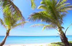 In paradise Stock Photo
