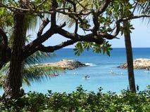paradise Imagem de Stock