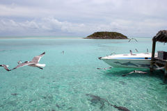 Paradise. Beautiful private and secluded islands in the Bahamas Stock Photography