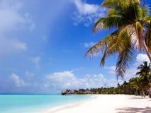 Paradise Stock Photo