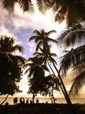 paradise Fotografia Stock Libera da Diritti