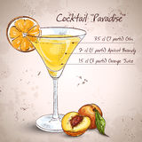 Paradise alcoholic cocktail Royalty Free Stock Photo