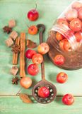 Paradise apples on the wooden table Stock Photos