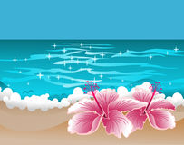 Paradise background with hibiscus and sweet ocean. Tropical illustration with warm ocean and two flowers of hibiscus near waves. Some gradients are used in file royalty free illustration