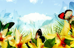Paradise bay. Tropical blue sky scenic landscape with fern palm leaves, hibiscus flowers and floating butterflies Royalty Free Stock Photography