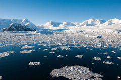 Paradise bay in Antarctica Royalty Free Stock Photos
