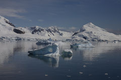Paradise Bay, Antartica. Stock Photography