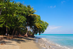 Paradise Beach. In the southern zone of Costa Rica, few kilometers away from Corcovado National Park Royalty Free Stock Image