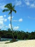 Paradise beach Stock Photos