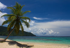 Paradise Beach. A beautiful beach in Panama Stock Images