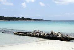 Paradise beach Royalty Free Stock Photo