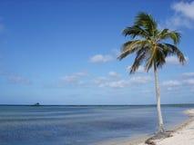 Paradise Beach. From Isla de la Juventud, Cuba stock photo