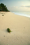 Paradise beach. A photo of an african beach just afer sunrise Royalty Free Stock Image