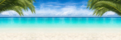 Paradise beach background. Wide paradise beach panorama background with coco palms royalty free stock photo